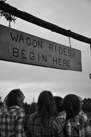 Country Wagon Rides