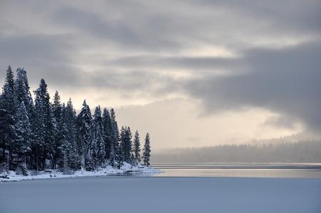 shorelines: Winter Lake