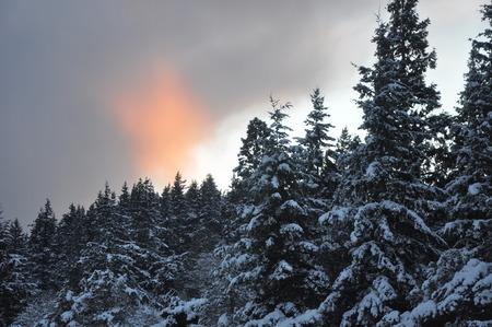 Snow Banco de Imagens - 51035780