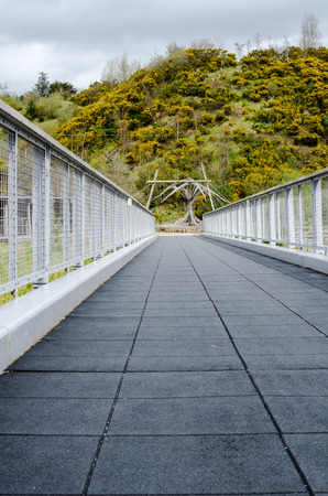 treeline: Vertical image of an empty foot bridge with diminishing lines and treeline background.