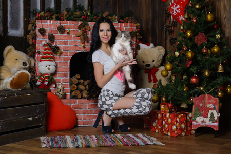 new year cat: Beautiful Girl, Cat and a Christmas Tree, Christmas, New Year