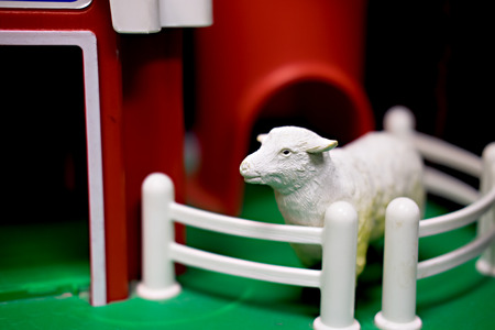 White toy sheep standing in front of red toy barn