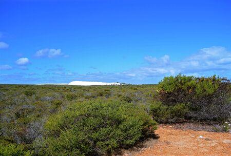 White sandunes near Cervantes, Western Australia