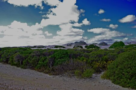 View of white sand dunes near Cervantes, Western Australia