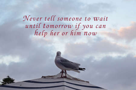 Image with motivational and inspirational quotes - Never tell someone to wait until tomorrow if you can help her or him now