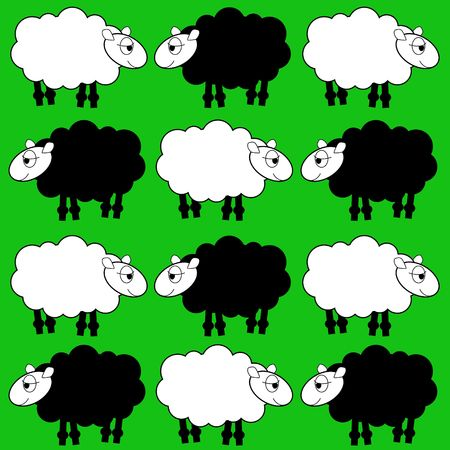 sheep background photo