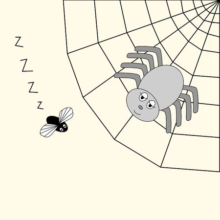 arachnoid: Spider in its web, watching its prey Stock Photo