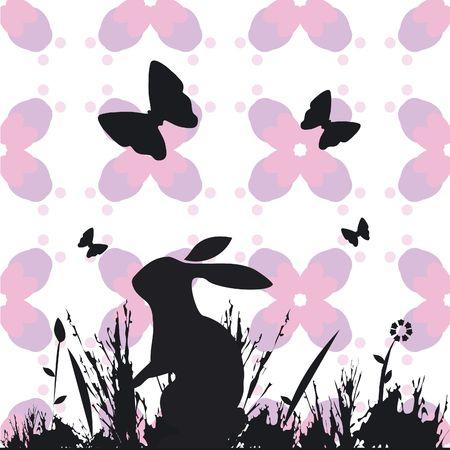 Rabbit in a field photo