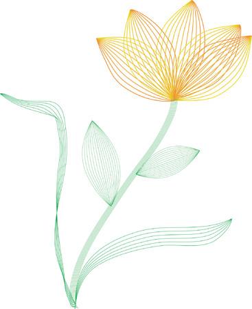 Wire frame flower Stock Vector - 446930