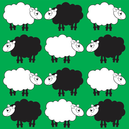 people nature: sheep background