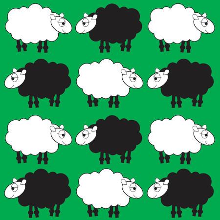 image lamb: sheep background