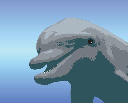 Feliz, sonriente caricatura de delfines  Foto de archivo - 794503