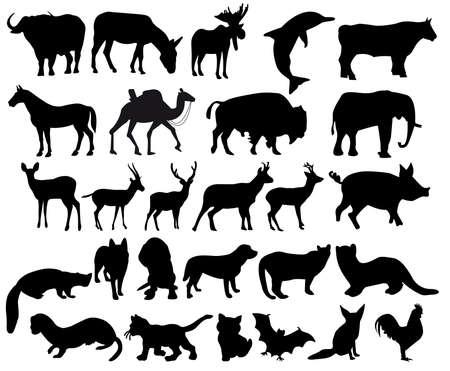 bison: Set of animals silhouettes Illustration