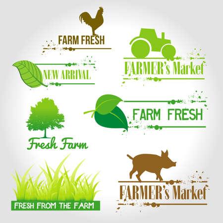 granjero: frescos de la granja