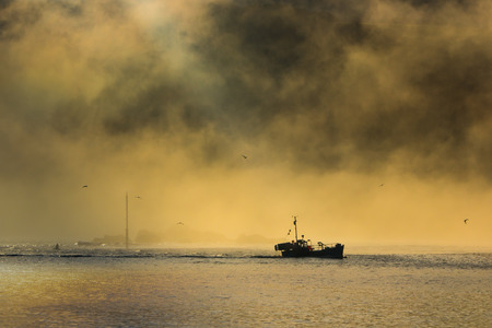 trawler: Trawler fishing boat leaves harbour with a misty sunrise.