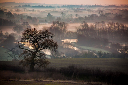 copse: Morning glow across the fields and lakes