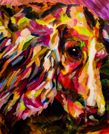 spaniel: acrylic contemporary painting of spaniel dog in bright colours