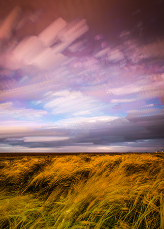 timelapse: timelapse movement of clouds across marshland and grasses in sunlight