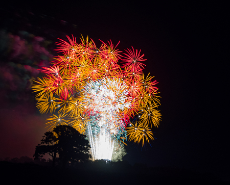 Tree silhouette with white, gold and red large burst.Spectacular fireworks at a national fireworks championship. Three of the UK best firework companies compete with a 10-minute firework display. 版權商用圖片
