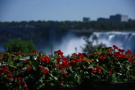 niagara falls: Niagara Falls Scenic Landscape