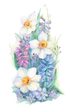 Bouquet of spring flowers. Hyacinths, narcissus and liverleaf. Watercolor hand drawn illustration isolated on white background.