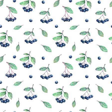 Watercolor seamless pattern with chokeberries (aronia), leaves and branches.