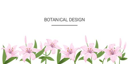 Floral spring design with pink flowers. Lily flowers on a white background. Template for design banner,  flyer, inviting. Vector hand-drawn illustration. Ilustração