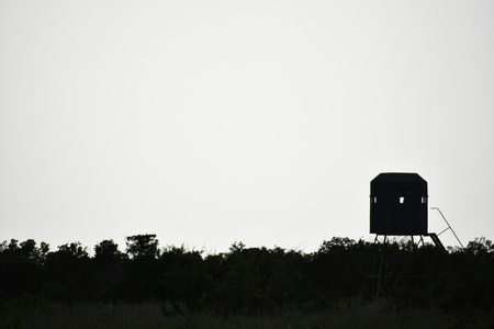 Deer Stand Silhouette