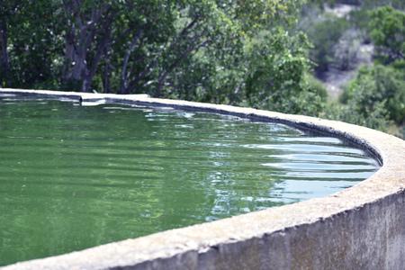 pila: Water in a Water Pila