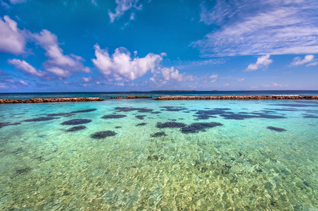 shallow water: Blue shallow water of the Maldivian island lagoon with corals. Stock Photo