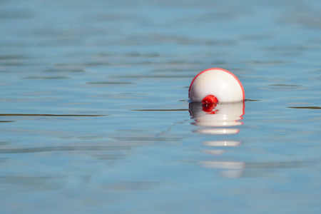 A bobber sits on a pond surface
