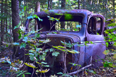 junk car: An abandoned truck cab in the forest