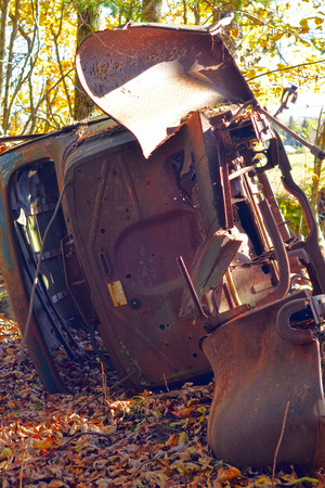 junk car: An overturned car body in the autumn sun