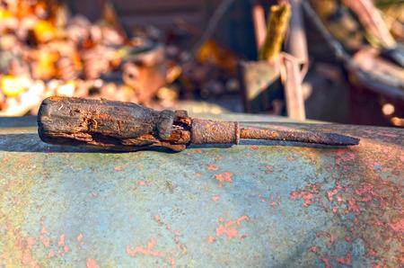 Found screwdriver Фото со стока