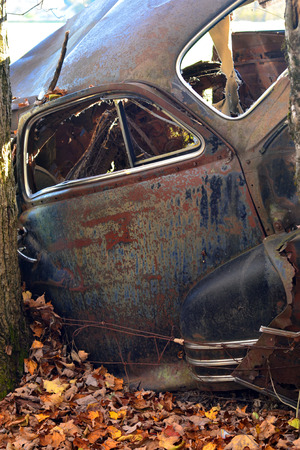 A mangled car body with autumn leaves