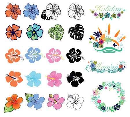 palm wreath: Set of hibiscuses and designs on summer theme Illustration