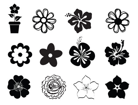 black and white flowers: Set of flowers Illustration