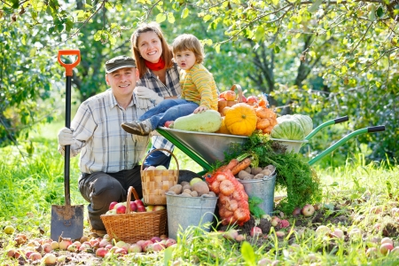 happy family harvests of apples photo