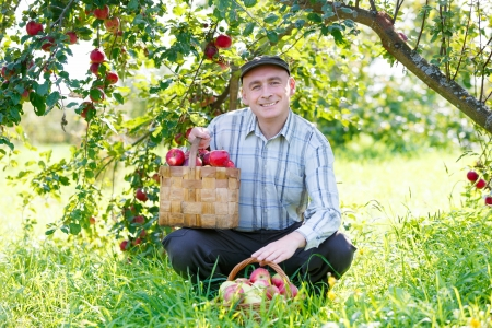 adult man sitting in the garden  Stock Photo - 15259938