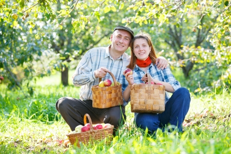 happy couple in the garden harvests Stock Photo