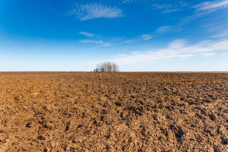 arable farming: plowed agricultural field on a background of blue sky