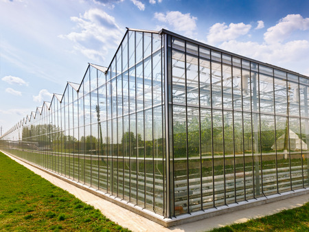 Greenhouses growing vegetables on background sky outdoors