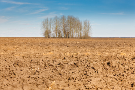 tilth: plowed agricultural field on a background of blue sky