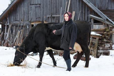 land meisje zorgt voor de koe Stockfoto