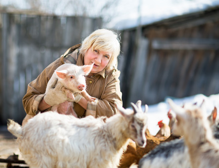 breeder: Adult female farmer holding a small pig.Focus on a pig Stock Photo