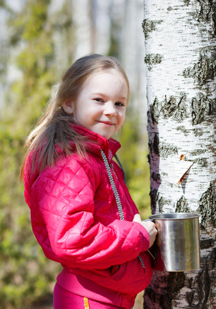 sap: child collects birch sap in woods
