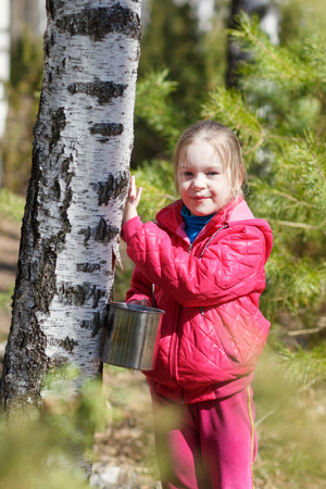 sylvan: child in spring forest collects birch sap Stock Photo