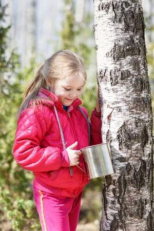 sylvan: child in a tree with capacity of collecting birch sap