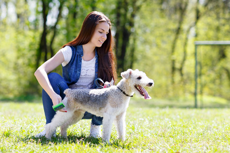 portrait of Beautiful young girl with foxterrier dog outdoor in  park Stock Photo