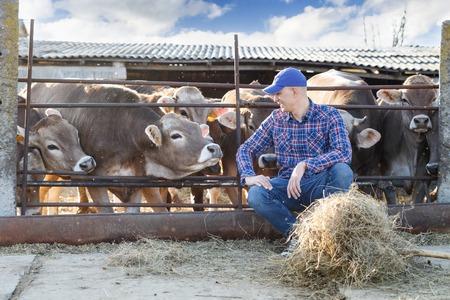 Portrait of a positive male farmer on a farm cows Archivio Fotografico